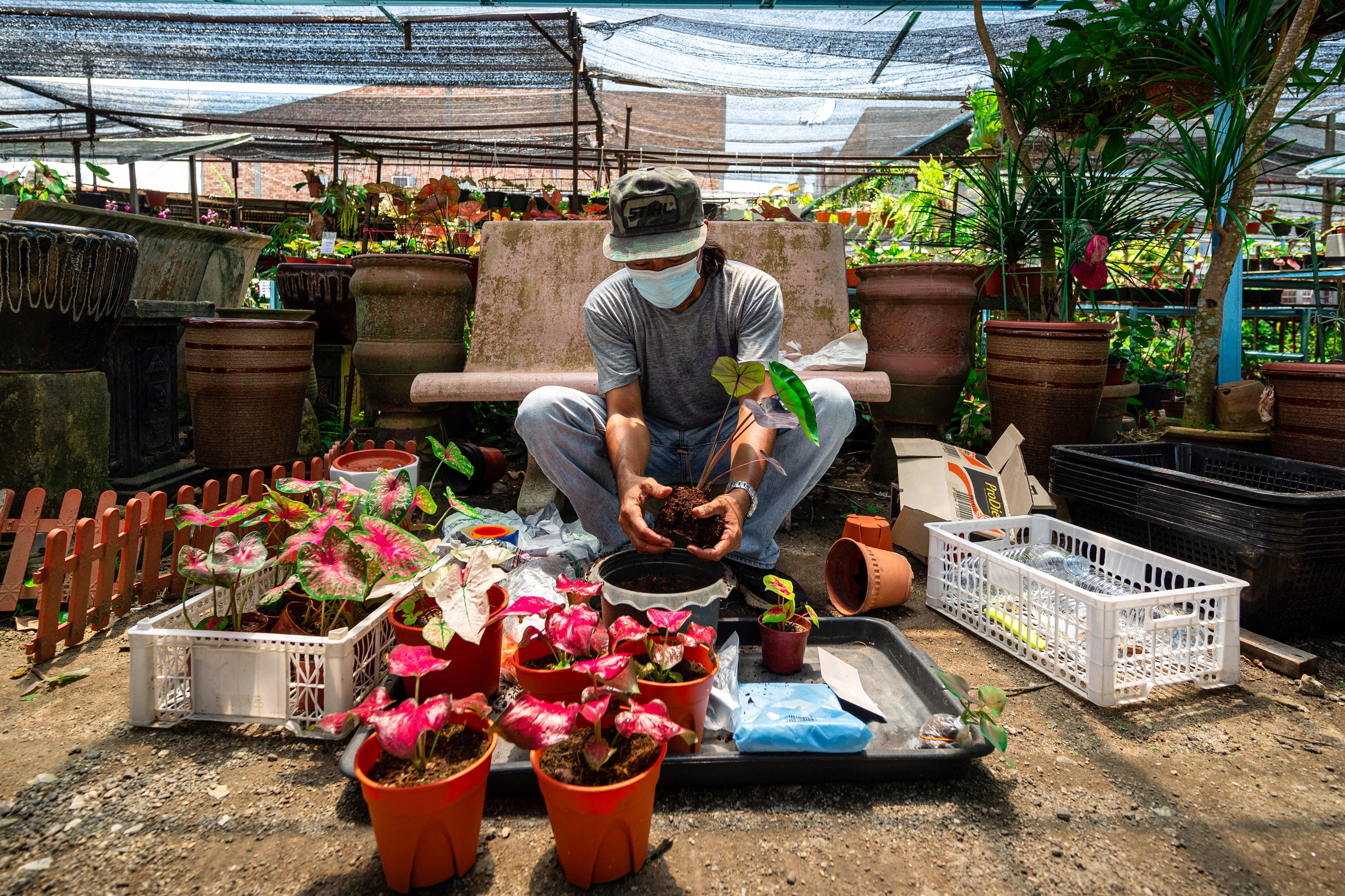 covid malaysia pandemic aftermath