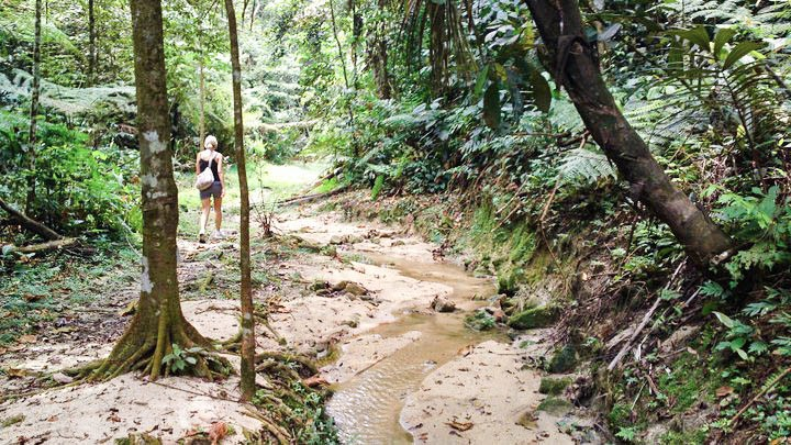mco malaysia climb trekking hiking